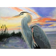 Heron Enjoying Sun-Set
